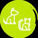 Avoir un chien ou chat