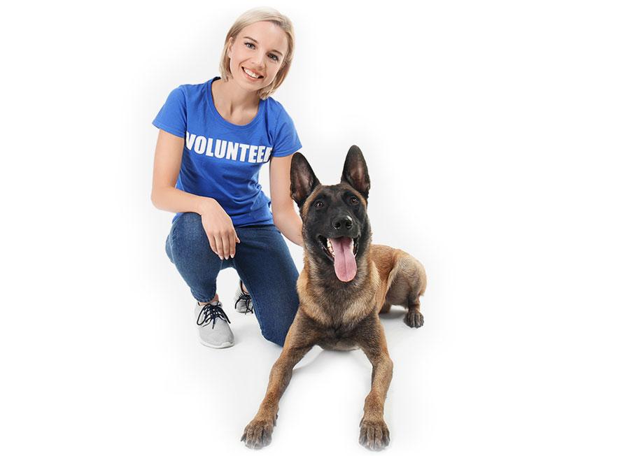 Faire le bonheur d'un animal abandonne ou maltraite